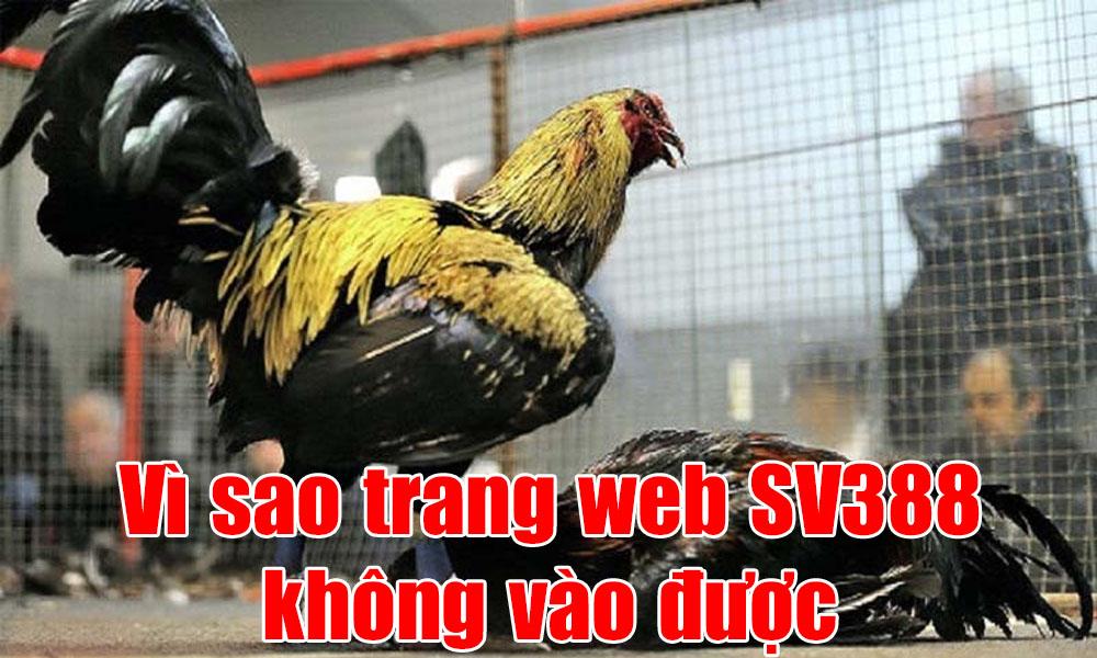 Vì sao trang web SV388 không vào được