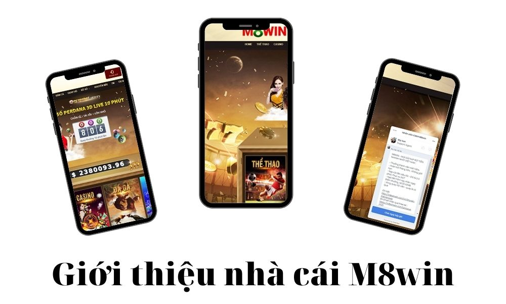 Giới thiệu nhà cái M8win tổ chức đá gà chuyên nghiệp