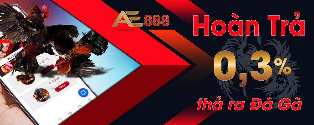 Link vào AEV888 đá gà trực tuyến mới nhất